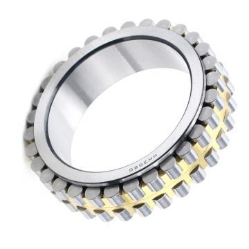 High Precision POM PE PA PP Material Plastic Deep Groove Ball Bearings 608 685 689 6000 6006 6200 6202 6208 6800 6802 6901 6902 6903